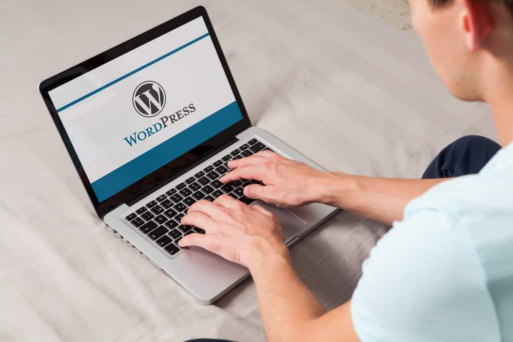person using wordpress